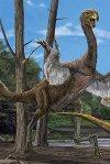 Gigantoraptor140607